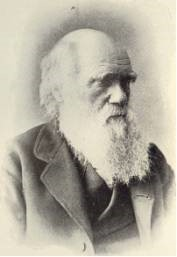 Figure 3: Charles Darwin developed the idea of the general theory of evolution, which Smolin has copied by analogy.