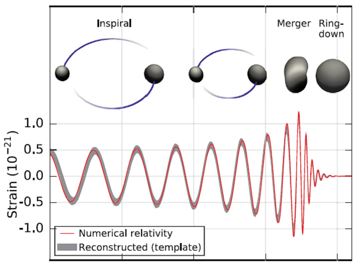 Inspiral of black holes and associated waveform. Ref. 3.