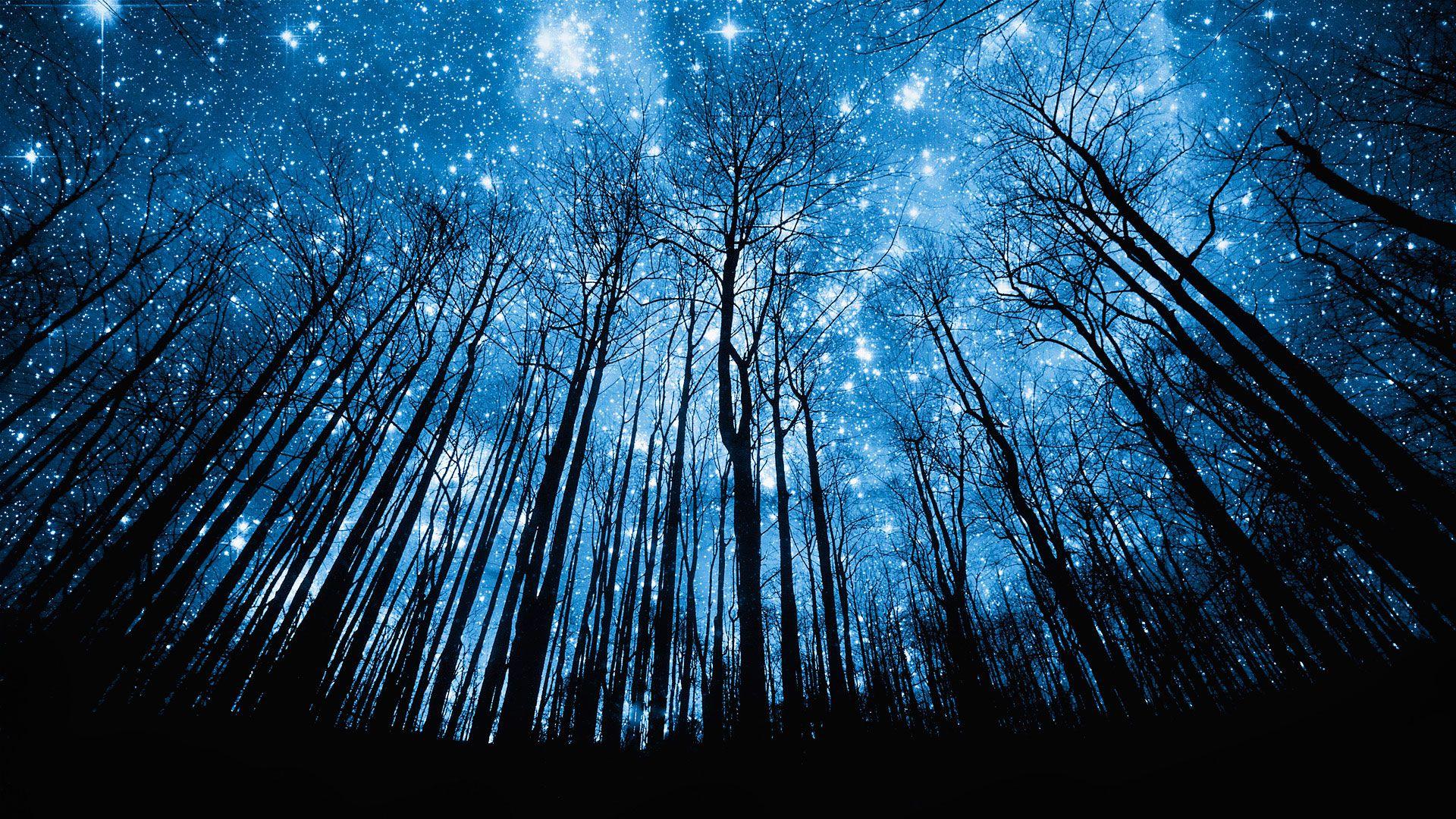 night-time sky